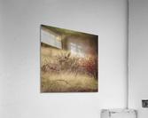 Wesley Allen Shaw 02085  Acrylic Print