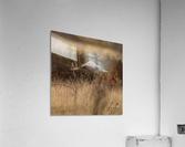 Wesley Allen Shaw 02245  Acrylic Print