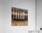 Wesley Allen Shaw 02250  Acrylic Print