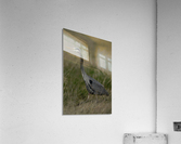 Wesley Allen Shaw 01769  Acrylic Print