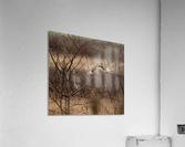 Wesley Allen Shaw 02117  Acrylic Print