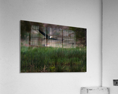 Wesley Allen Shaw 04576  Acrylic Print