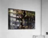 Wesley Allen Shaw 09085  Acrylic Print