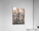 Wesley Allen Shaw 09307  Acrylic Print