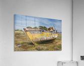 MG 0034  Acrylic Print