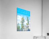 Top of the Mountain  Acrylic Print