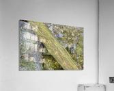 The Wall  Acrylic Print