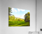Wales in Spring  Acrylic Print