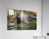 fiery gallop by milan malovrh   Acrylic Print