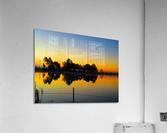 20181211 IMG 2920  Acrylic Print