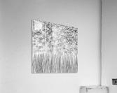 Parallelism  Acrylic Print
