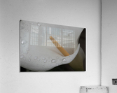20200314 DSC 0071  Acrylic Print