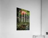 20201004 DSC 0252  Acrylic Print
