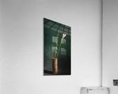 Etude Zen 3m  Acrylic Print