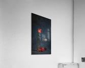 Etude Zen 3n  Acrylic Print