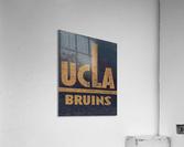 Vintage UCLA Bruins Art  Acrylic Print