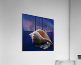 Single Conch Shell With Colored Glass   Acrylic Print