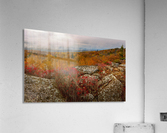 Colors of Nature apmi 1795  Acrylic Print