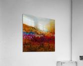 Illusion  Acrylic Print
