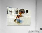 Cayman Crabs  Acrylic Print