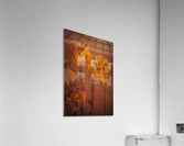 Etude Zen 7 p  Acrylic Print