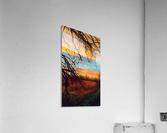 winter blast  Acrylic Print