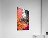 kitchen tiles morning greeting  Acrylic Print