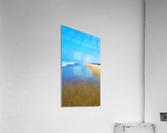Manhattan Beach Pathway  Acrylic Print