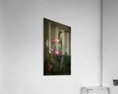 Etude Zen 8 a  Acrylic Print