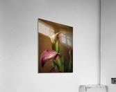 Etude Zen 8 b  Acrylic Print
