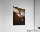Etude Zen 8 e  Acrylic Print