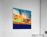 sky wires  Acrylic Print