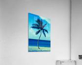 palm color 6  Acrylic Print