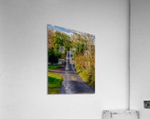 Donegal Byway  Acrylic Print