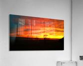 Evening Magic  Acrylic Print