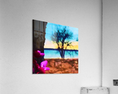 Two Seasons  Acrylic Print