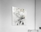 The nurse by Degas  Acrylic Print