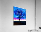 stillness  Acrylic Print