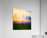 looking out  Acrylic Print