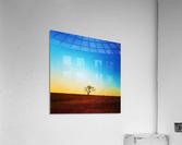 solitude tree  Acrylic Print