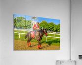 Racehorse01  Acrylic Print