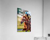 Racehorse11  Acrylic Print