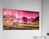 Eikthyrnir  Acrylic Print