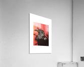 RBB  Acrylic Print