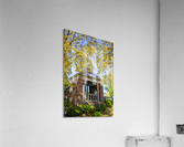 Shelter in the Fall  Acrylic Print