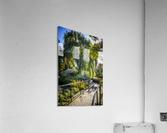 Drape of Trees  Acrylic Print