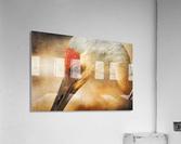 Solace  Acrylic Print
