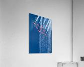 Snow Birds in Flight  Acrylic Print