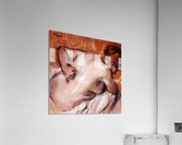 Womans back by Degas  Acrylic Print