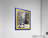LA Rams 1951 World Champions Art  Acrylic Print